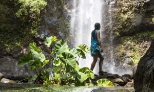 Wailua Sacred Falls Tour