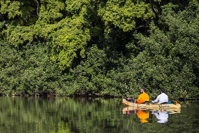 Kayaking the Tranquil Wailua River