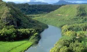 Wailua River Kayak Rentals