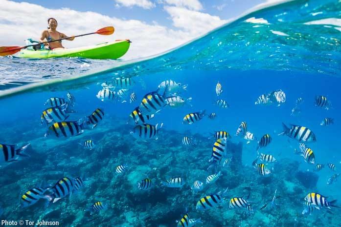 Kauai Snorkeling Adventure