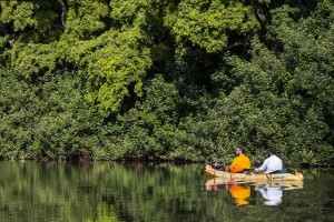 Kayaking the Tranquil Wailua River